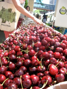 Fresh Oregon cherries